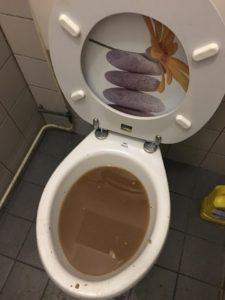 WC verstopt Vierpolders